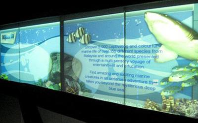 Aquaria Aquarium