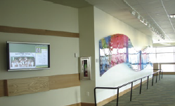 Other entertainment displays have been installed in areas where people congregate such as cafeterias and where long lines are present.