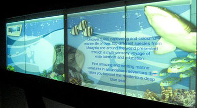aquarium digital signage